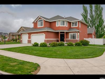 Riverton Single Family Home For Sale: 4359 W Silver Summit Ct