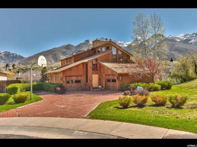 Sandy Single Family Home For Sale: 8931 S Tracy Cir