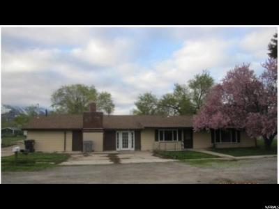 Santaquin Single Family Home For Sale: 195 W 200 N
