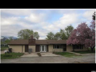 Santaquin Single Family Home Backup: 195 W 200 N