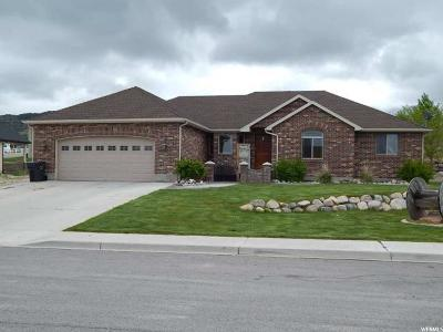 Nephi UT Single Family Home For Sale: $354,900