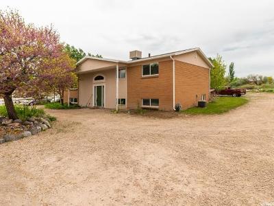 South Jordan Single Family Home For Sale: 1521 W 11030 S