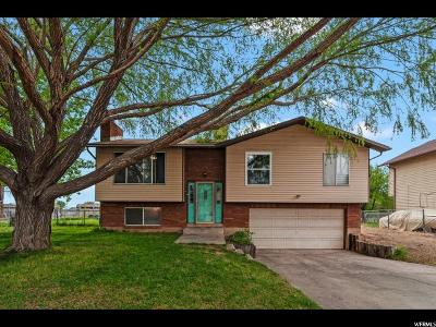 Roy Single Family Home For Sale: 4851 S 3200 W