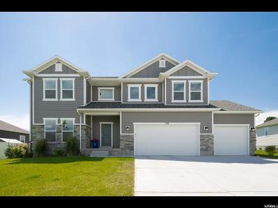Wasatch County Single Family Home For Sale: 250 S 300 E