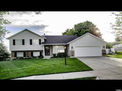 Ogden Single Family Home Backup: 3561 N 350 E