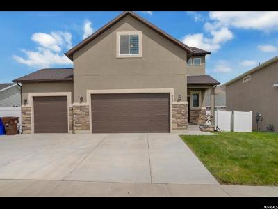 Eagle Mountain Single Family Home For Sale: 4182 N Sleeping Hollow Dr