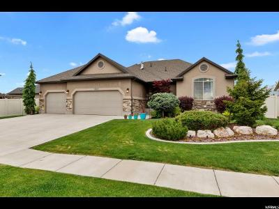 Clearfield Single Family Home Under Contract: 2025 S Demetro Dr