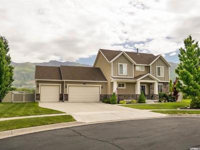 Farmington Single Family Home For Sale: 802 N McKittrick Ln W