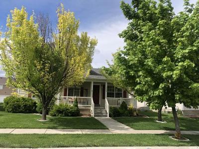 Eagle Mountain Single Family Home For Sale: 7849 N Saddleback Dr