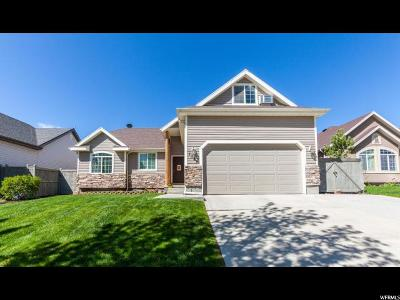 Eagle Mountain Single Family Home For Sale: 7381 N Ute Dr