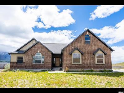 Santaquin Single Family Home For Sale: 1351 S Vista Ridge Dr