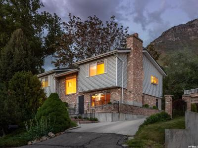 Orem, Provo Single Family Home For Sale: 1246 Old Willow Ln