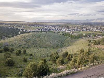 Herriman Residential Lots & Land For Sale: 7690 W Mountain Top Rd