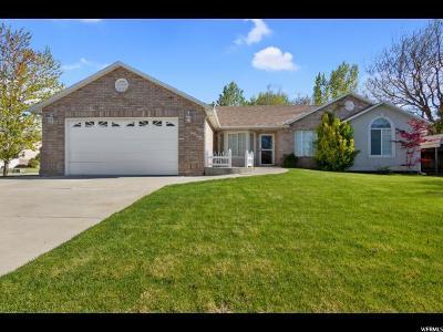 Spanish Fork Single Family Home For Sale: 672 Quail Ridge Dr