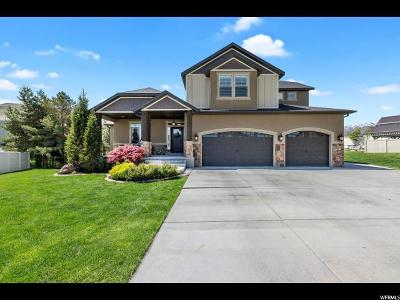 Herriman Single Family Home For Sale: 6577 W Candice Dr S