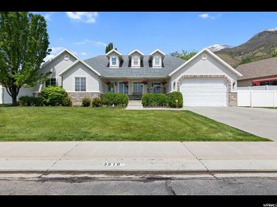Cedar Hills Single Family Home For Sale: 3810 Valley View Dr