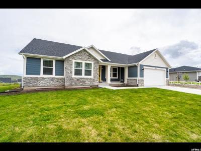 Eagle Mountain Single Family Home For Sale: 2474 E Horizon Dr