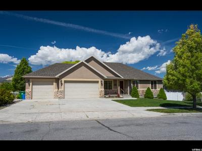 Herriman Single Family Home For Sale: 14102 S Emmeline Dr