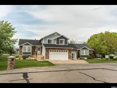 Weber County Single Family Home For Sale: 4786 W 3450 S