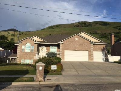 Perry Single Family Home For Sale: 2051 S 100 W