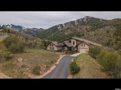 Park City Single Family Home For Sale: 7323 Pine Ridge Dr