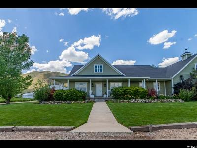 Single Family Home For Sale: 8164 S 5600 W