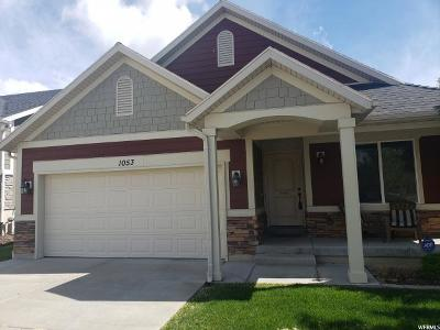 Clearfield Single Family Home For Sale: 1053 W 250 N