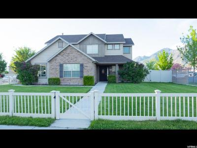 Springville Single Family Home For Sale: 1082 W Center St