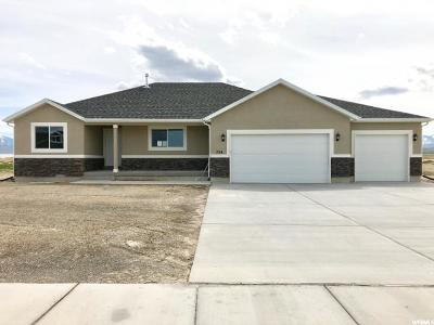 Grantsville Single Family Home For Sale: 724 E Sunset View Rd S #823