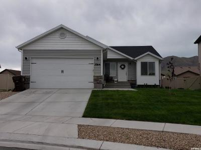 Eagle Mountain Single Family Home For Sale: 3764 N Downwater St