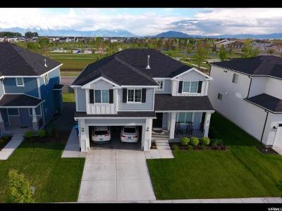 Vineyard Single Family Home For Sale: 52 E 425 N
