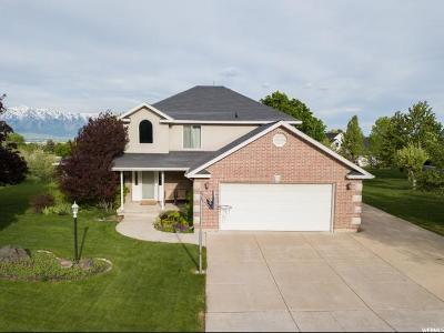 Providence Single Family Home For Sale: 647 S 500 E