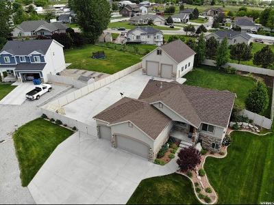 Willard Single Family Home For Sale: 855 W 7300 S