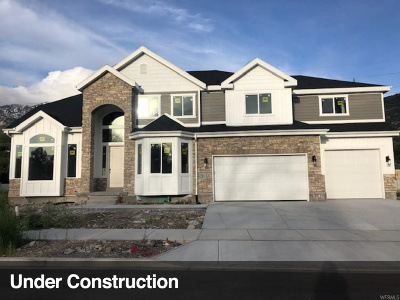 Orem, Provo Single Family Home For Sale: 4230 N Edgewood Circle W #13