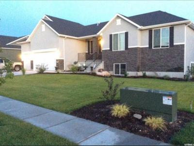 Kaysville Single Family Home For Sale: 675 W Mare Dr
