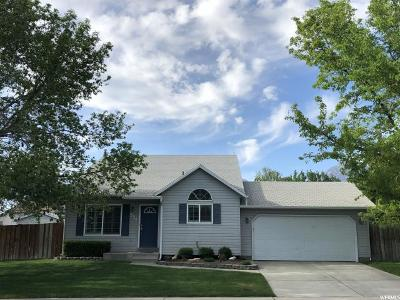 Orem Single Family Home For Sale: 538 W 1120 N