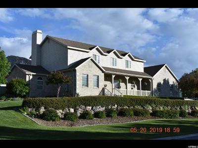 Single Family Home For Sale: 188 E Ama Fille N