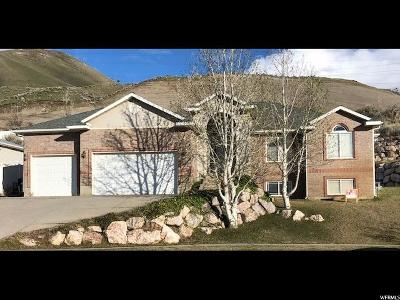 Perry Single Family Home For Sale: 426 W 2700 S