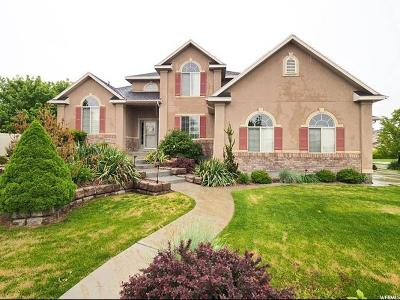 West Jordan Single Family Home For Sale: 5172 W Snow Bell S