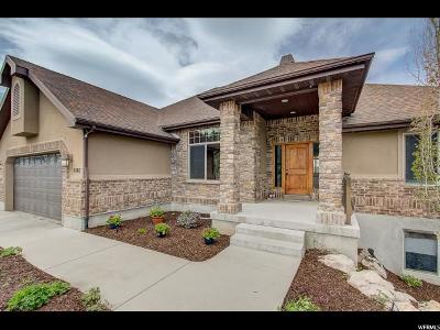 Park City Single Family Home For Sale: 6503 Mountain View Dr