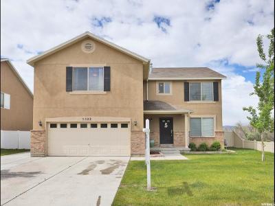 Lehi Single Family Home For Sale: 3322 W Jordan Way S