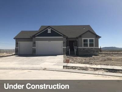 Single Family Home For Sale: 578 E Delano Peak Rd #127