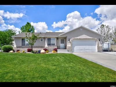 Riverton Single Family Home Under Contract: 13976 S Cedar Point Peak Cir