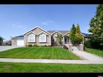 Riverton Single Family Home For Sale: 4234 W Swensen Farm Dr