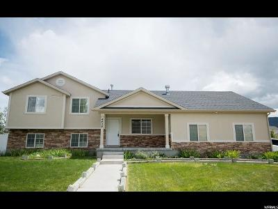 Eagle Mountain Single Family Home For Sale: 4626 N Osprey Way