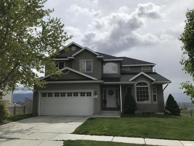 Saratoga Springs Single Family Home For Sale: 2396 Orchard Way