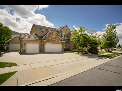 Fruit Heights Single Family Home Backup: 987 S Caprice Ln