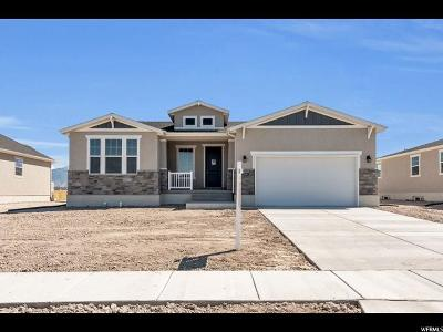 Clinton Single Family Home For Sale: 2436 N Sarus Crane Dr