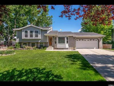 Sandy Single Family Home For Sale: 1037 E Annabelle Ln