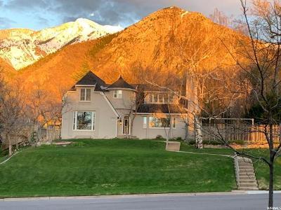 Ogden Single Family Home For Sale: 2724 Taylor Ave